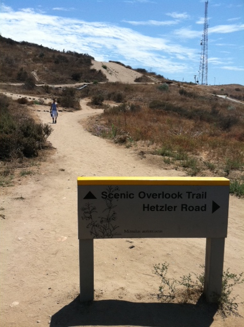 Hike the Baldwin Hills for great views of L.A.