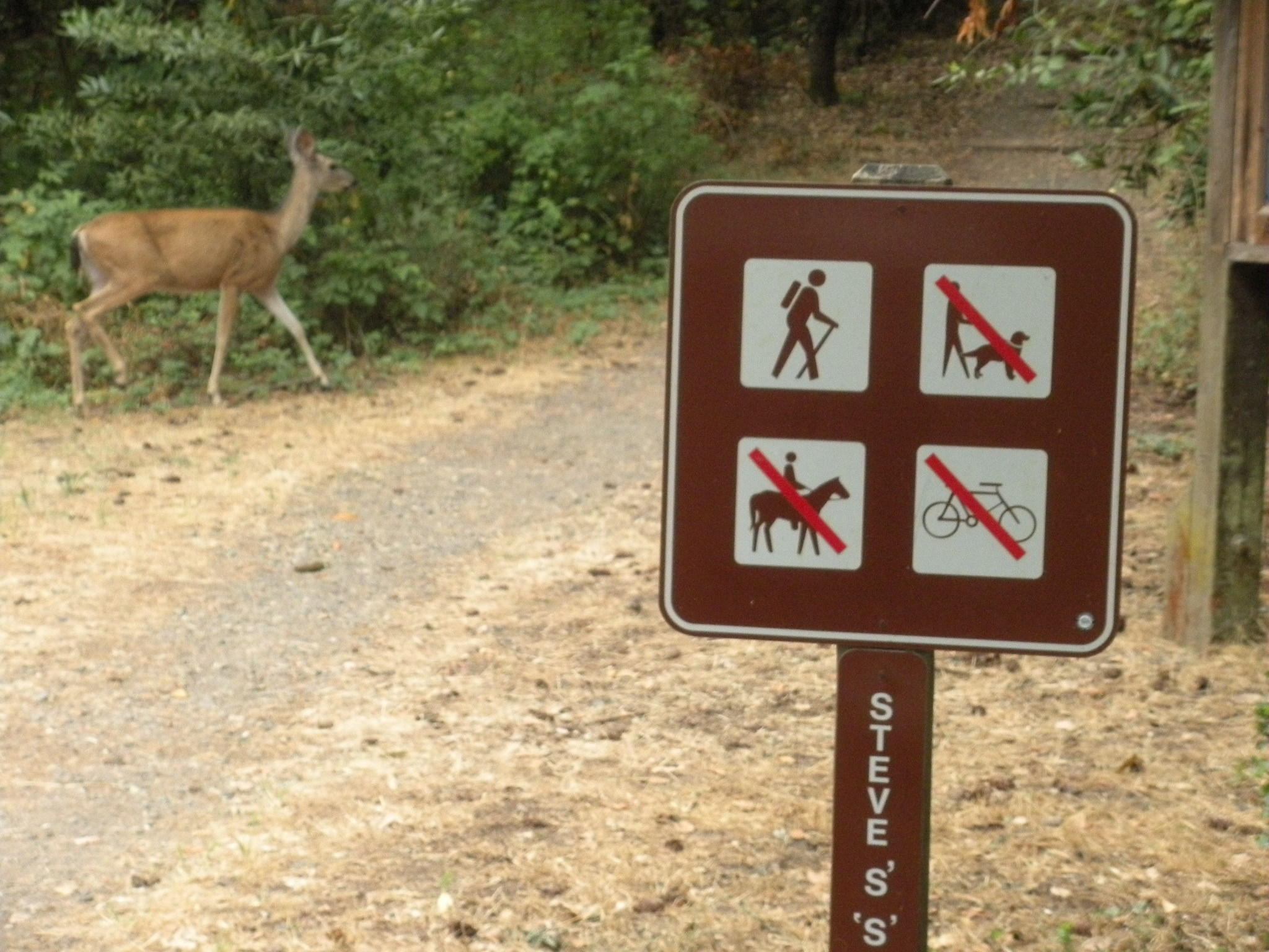 Annandel trail sign with deerl