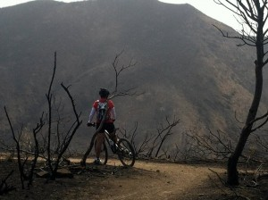 Each bend in the trail through wildfire-blackened Point Mugu State Park gives you pause to think about how nature might recover. (Michelle Friend)