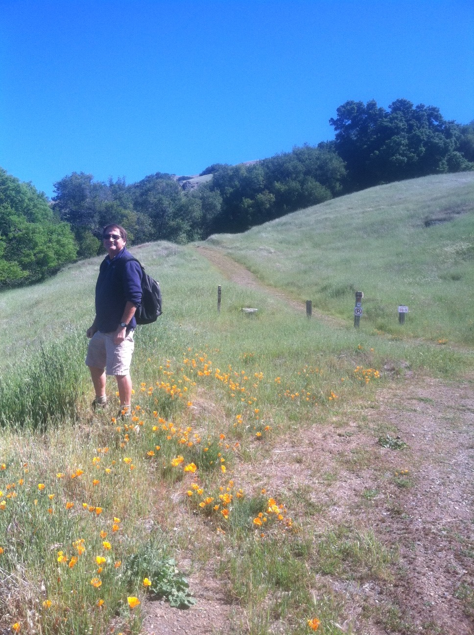 "The Trailmaster says: ""Hiking Mt. Diablo is heavenly."""