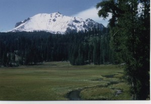 A picture-perfect hiker's path along Kings Creek in Lassen Volcanic National Park