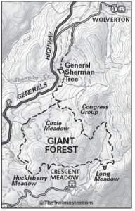 Giant Forest Map by TomHarrisonMaps.com (click to enlarge)