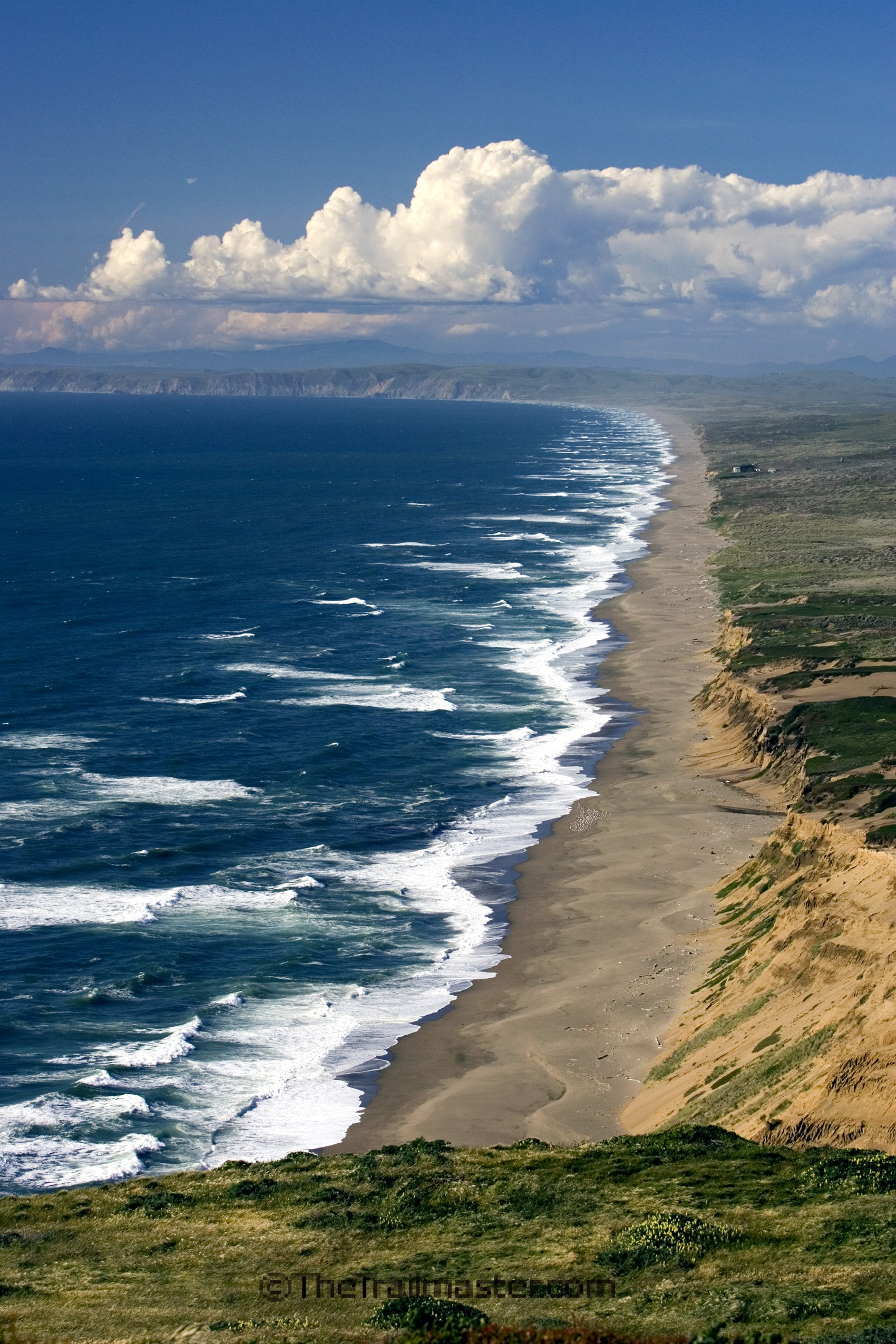 Point Reyes, a haven for birds, heaven for hikers.