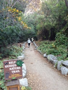 Happy Nature Trails in Monrovia Canyon Park