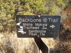 Follow the Backbone Trail to Sandstone Peak, high point of the Santa Monica Mountains.