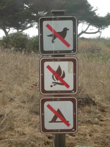 "Trail Sign with a Trio of ""Nos"": no dogs, no campfires, no camping."