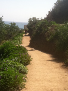 Beginning at Ventura's City Hall, the lovely trail offers grand ocean views.