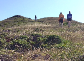 The trail to Twin Peaks is one of many hikers can access via San Francisco's extensive transit system.