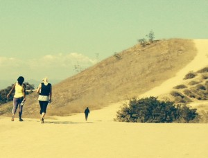 Whittier Hills offer hikers quite a workout!