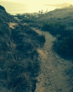 Take a hike from the Malibu Bluffs to Malibu Beach.