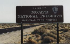 Expect lonely roads, quiet and solitude when you enter Mojave National Preserve.