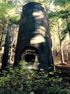 In Limekiln State Park, four lime kilns are reminders of a Big Sur backwoods industry.
