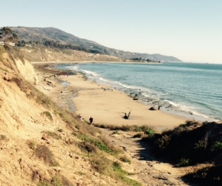 Bluffs and Beach are equally great to hike at Carpinteria State Beach.