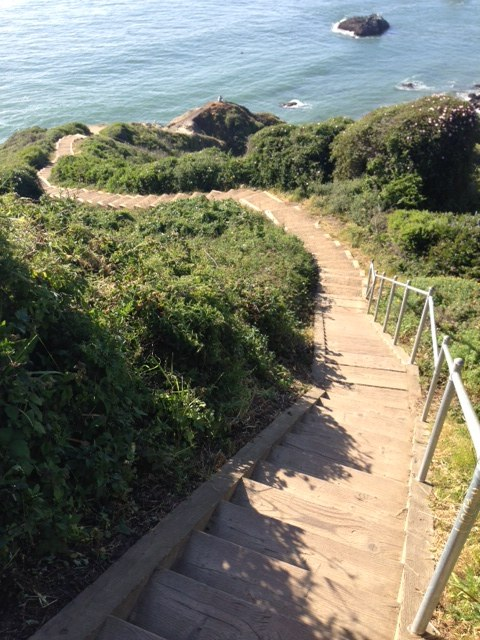 In Golden Gate National Recreation Area, the Coastal Trail is an often stunning example of the trail builder's art.