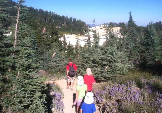 Lassen National Park features a very well signed and maintained trail system.
