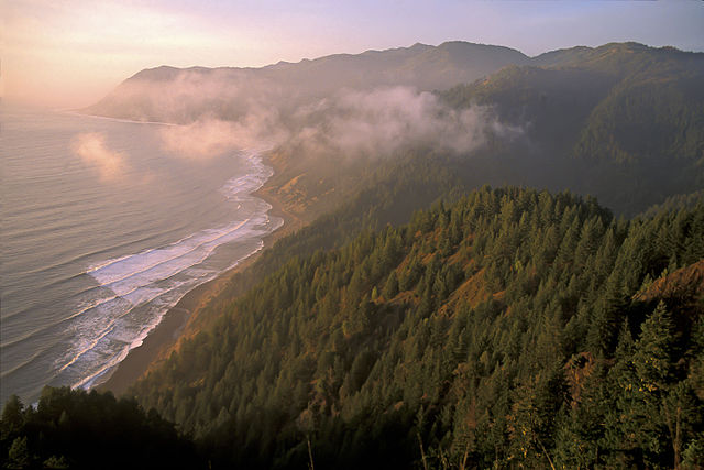 On California's Lost Coast, the rugged peaks of the King Range seem to rise right out of the surf. (photo by Bob Wick, BLM)