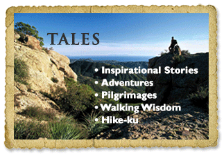 Tales from the Trail