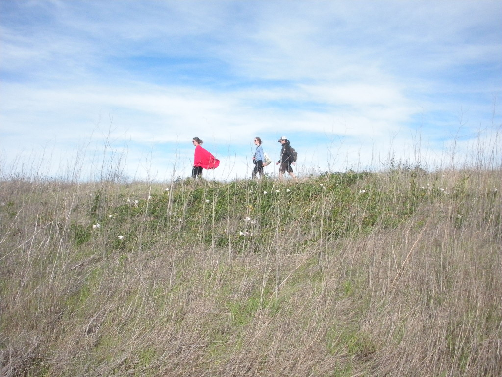 Women hikers lead the way in hiking for health and fitness and hitting the trail with friends.