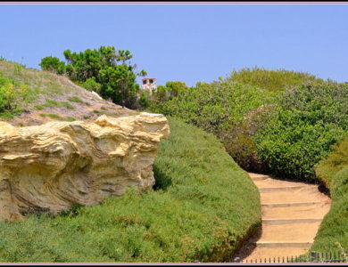 Pathways lace Crystal Cove State Park bluffs
