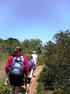 Even if you're in the middle or at the end of a group of hikers, pay attention to the trail and the terrain!