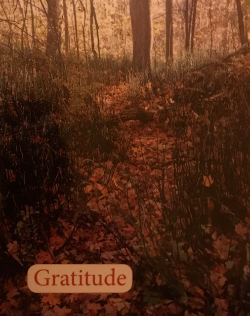 Hike with gratitude. We have much to be thankful for.